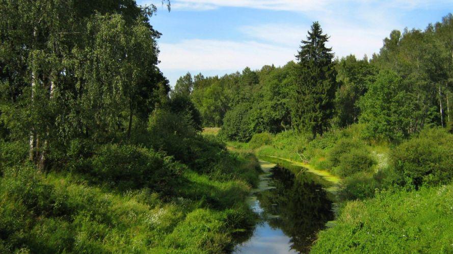 landscapes nature forests land wallpaper