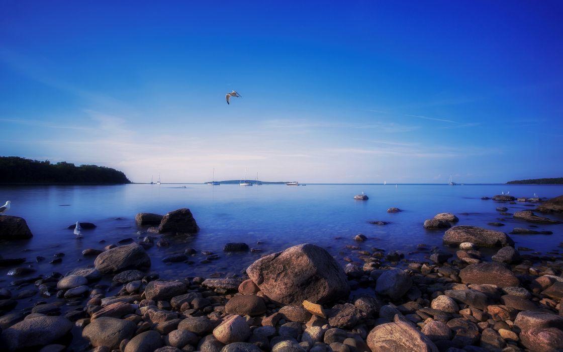 water landscapes nature coast birds rocks Canada seagulls skyscapes sea wallpaper