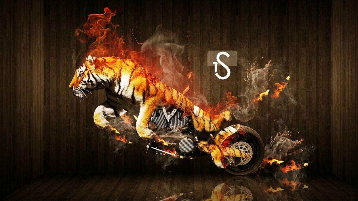tigers motorbikes photo manipulation wallpaper