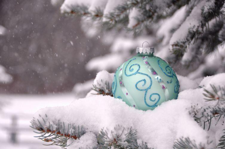 christmas branch christmas snow wallpaper