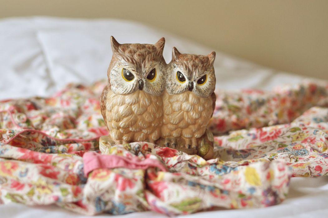 Closeup Owl Toy bokeh wallpaper