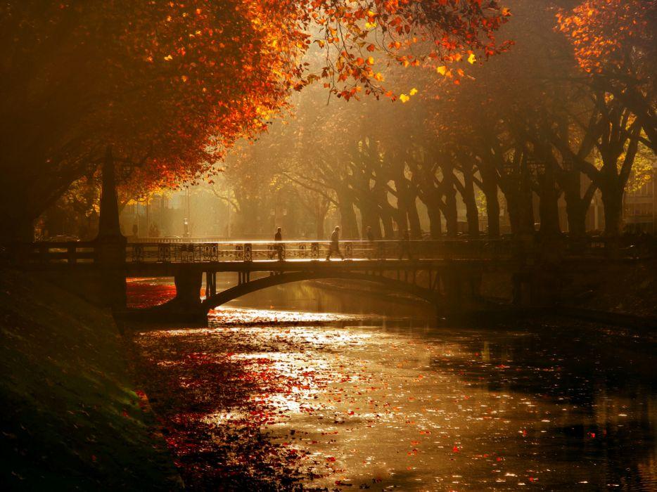 Dusseldorf Royal avenue bridge canal trees autumn mood wallpaper
