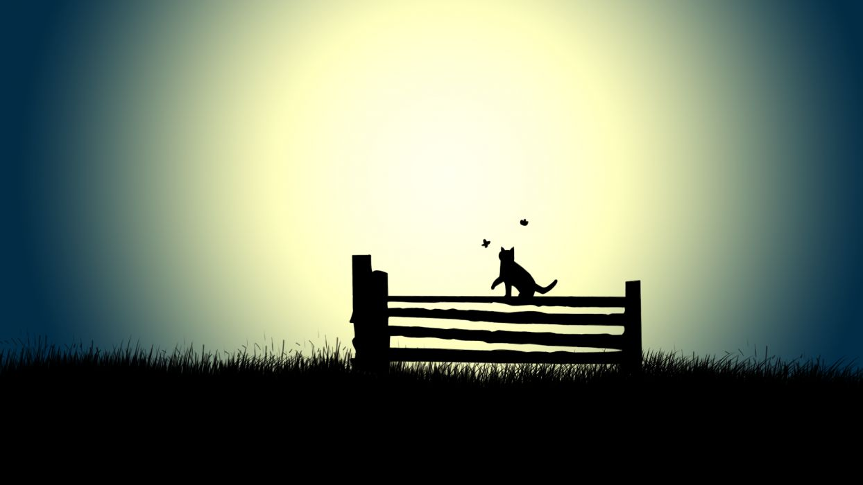 Fence Cat bokeh wallpaper