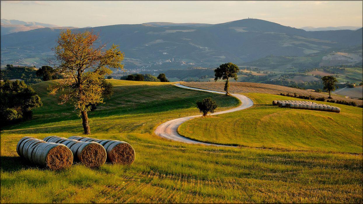 hills field trees road night autumn wallpaper