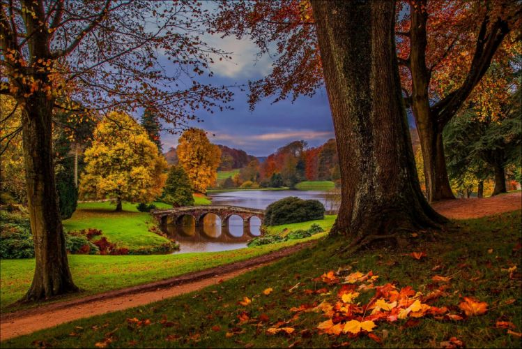 nature hdr forest park walk river autumn trees alley leaves wallpaper