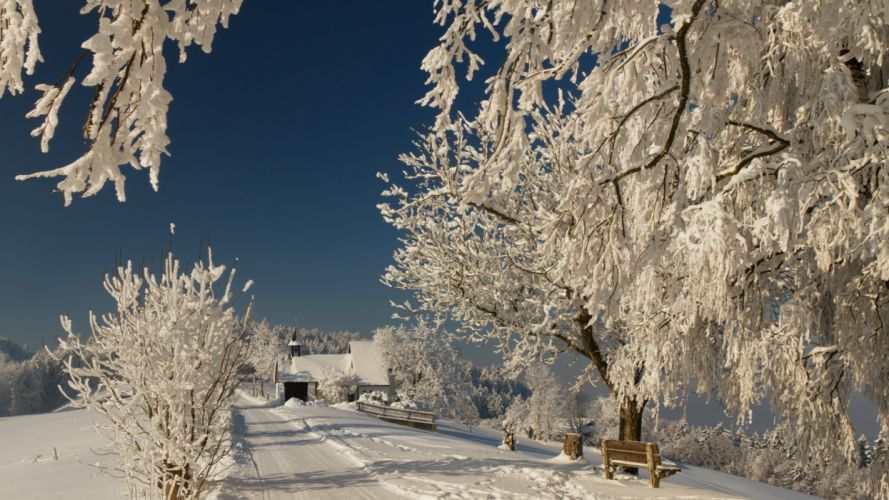 snow branches winter road nature wallpaper