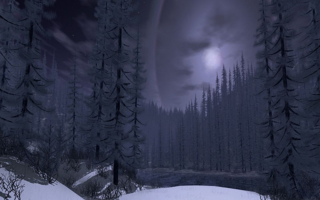 winter nature forest snow moon tree wallpaper