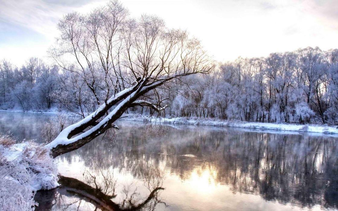 winter nature landscape river trees shrubs shore snow reflection wallpaper