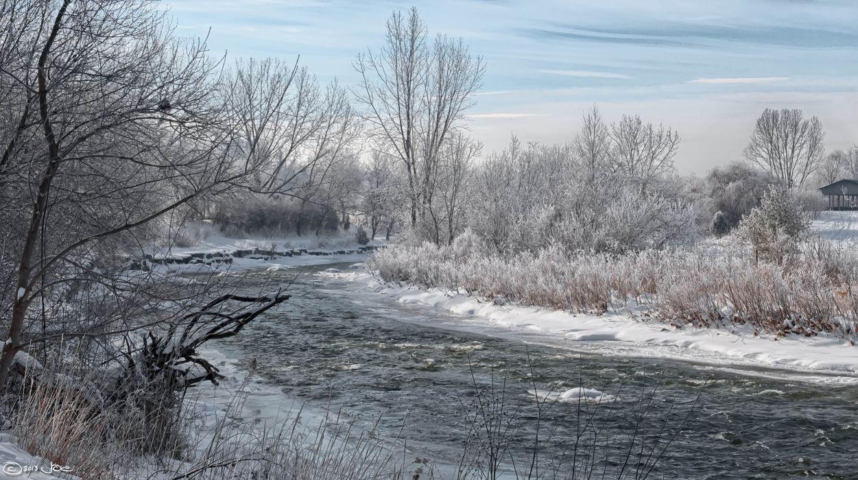 winter trees river landscape wallpaper
