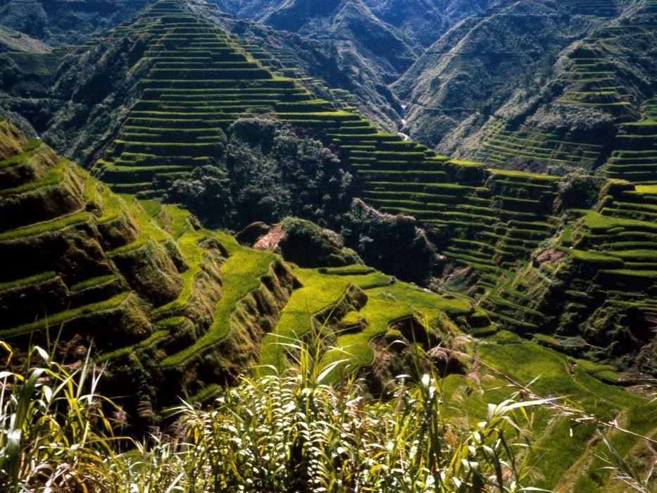 mountains landscapes nature rice terraces wallpaper