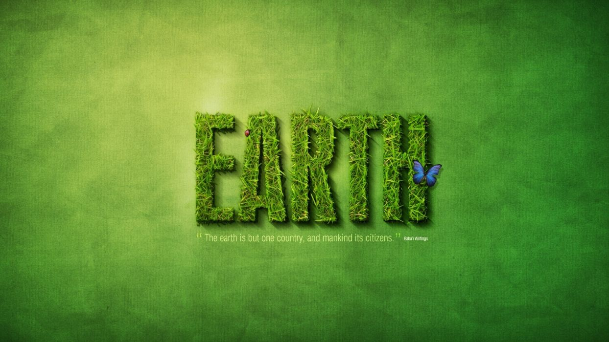 insects grass Earth typography butterflies wallpaper