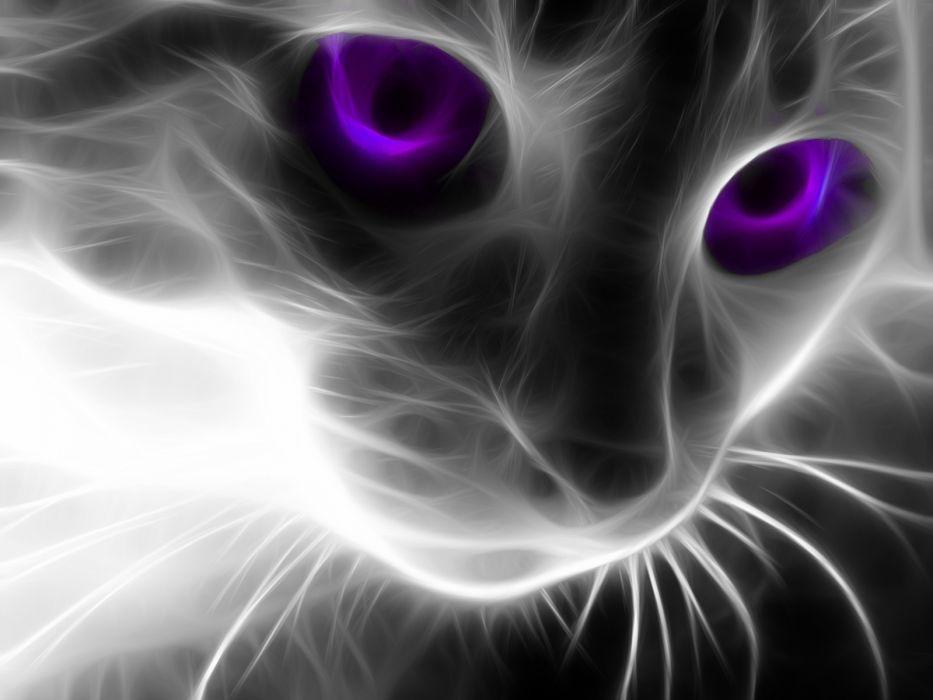 cats Fractalius wallpaper