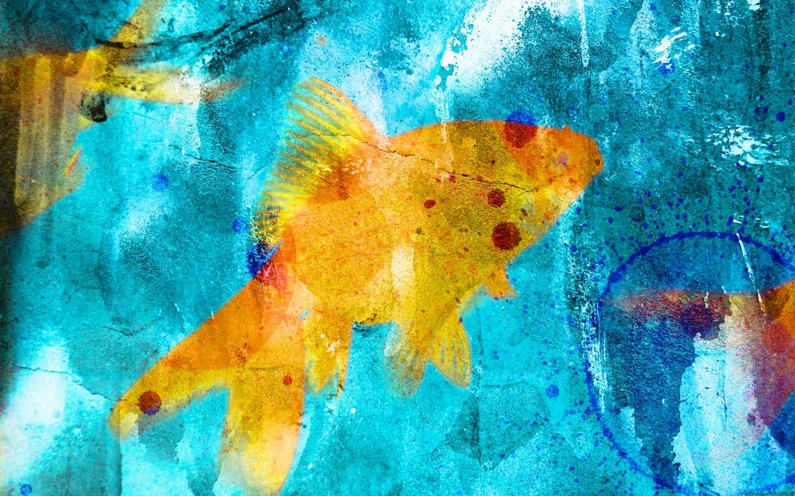 fish textures goldfish wallpaper