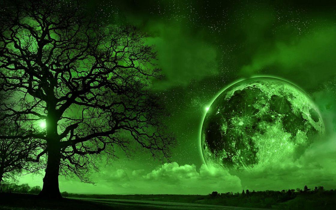 trees Moon monochrome wallpaper