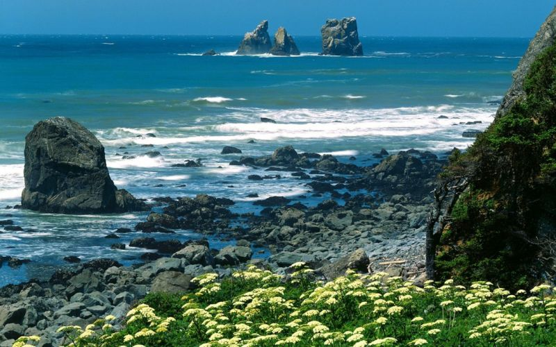landscapes nature coast California National Park wallpaper