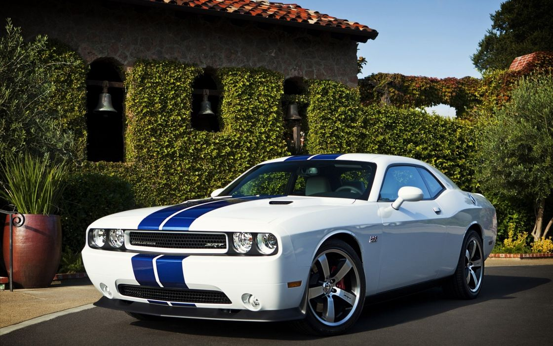 white cars Dodge Challenger racing stripes muscle car wallpaper