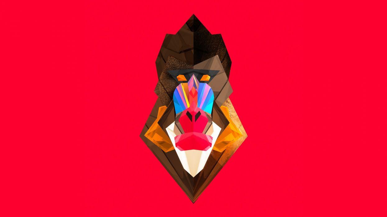 abstract animals vectors digital art monkeys Justin Maller baboon wallpaper