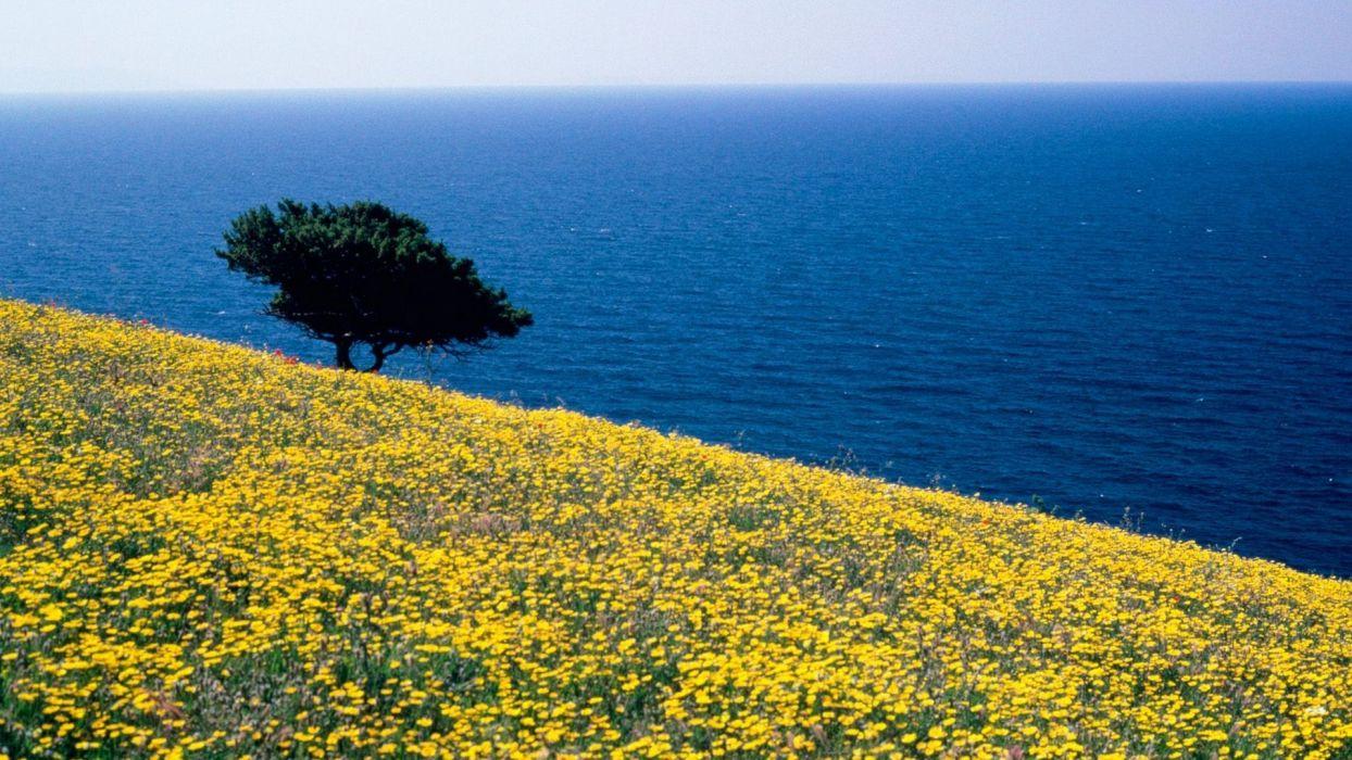 Greece sea wallpaper