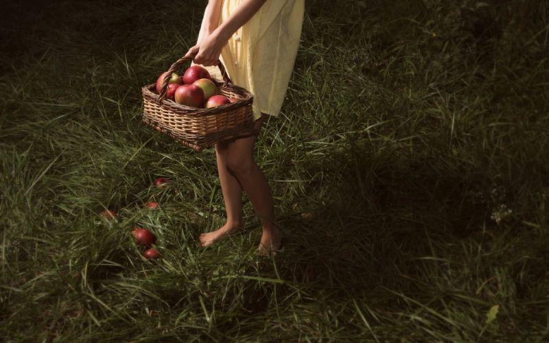 grass apples wallpaper