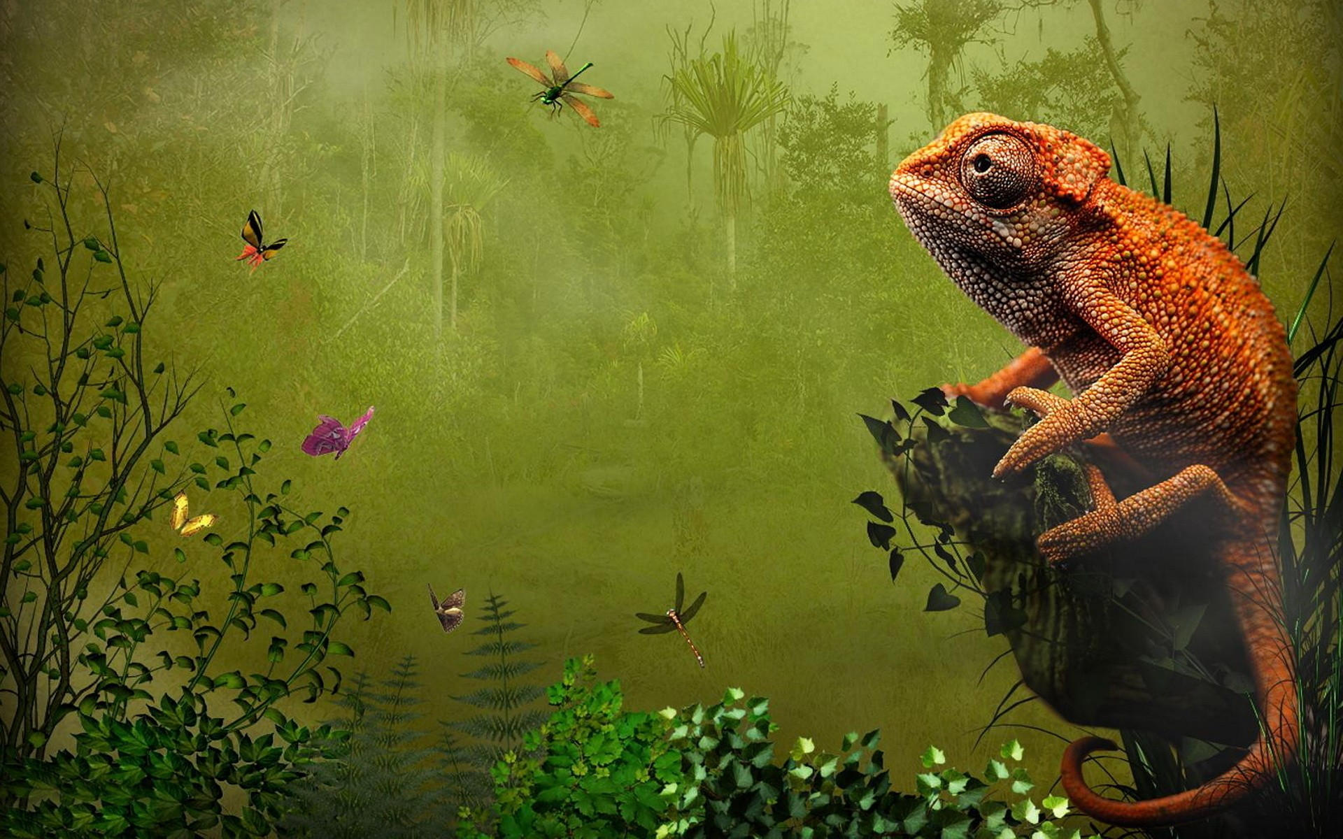 22 reptile hd wallpapers - photo #5