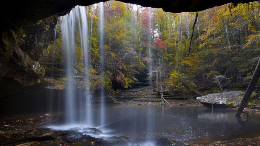 landscapes nature forests national Alabama wallpaper