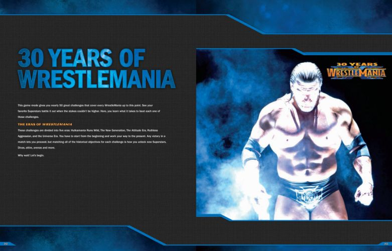 WWE wrestling poster n wallpaper