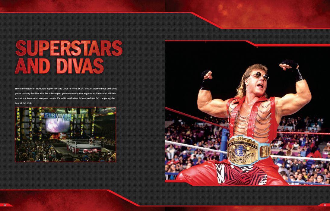 WWE wrestling poster   nv wallpaper