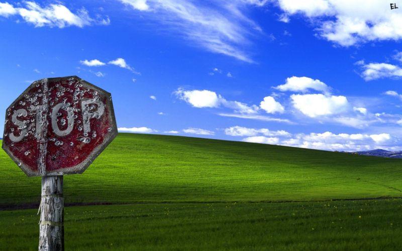 nature Windows XP Microsoft Windows wallpaper