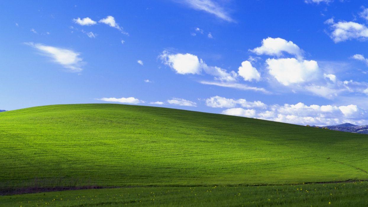 Windows XP wallpaper
