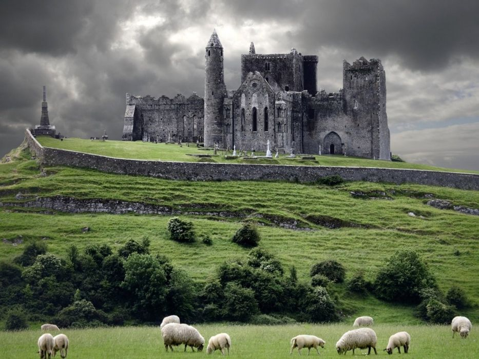 nature castles sheep medieval wallpaper