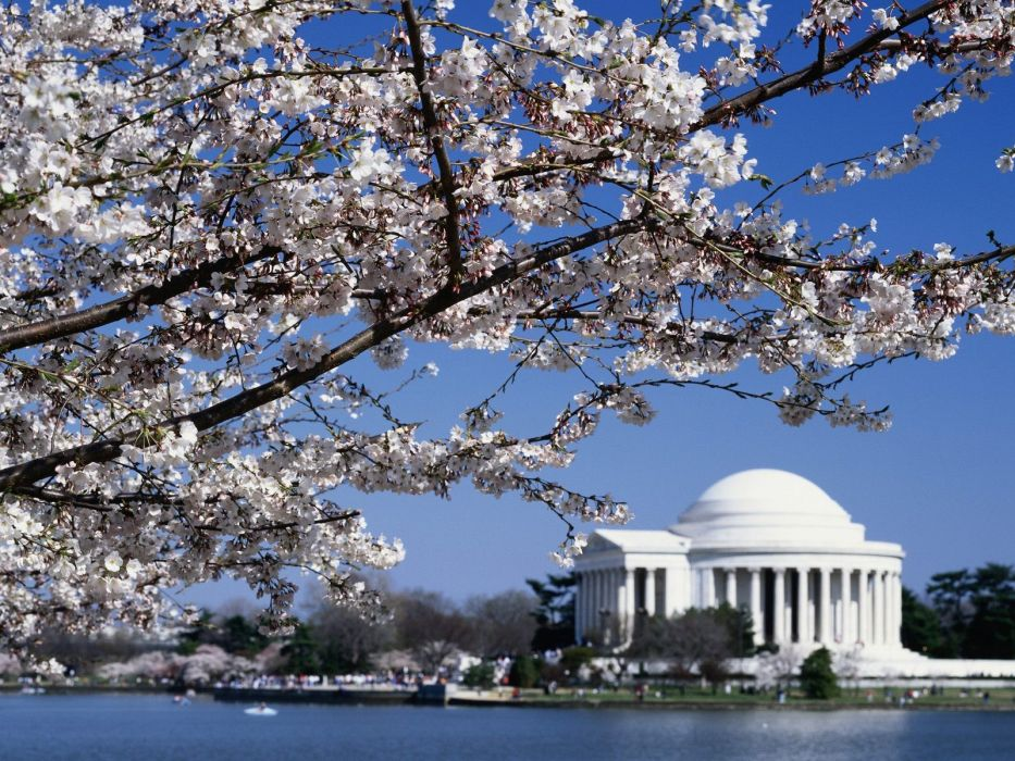 Jefferson Memorial Washington wallpaper