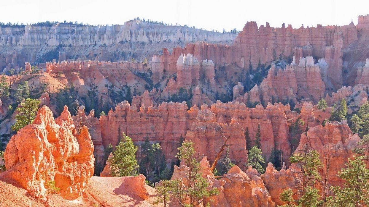 nature canyon wallpaper