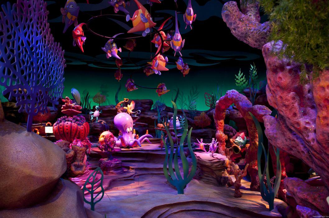 fish ocean underwater      g wallpaper