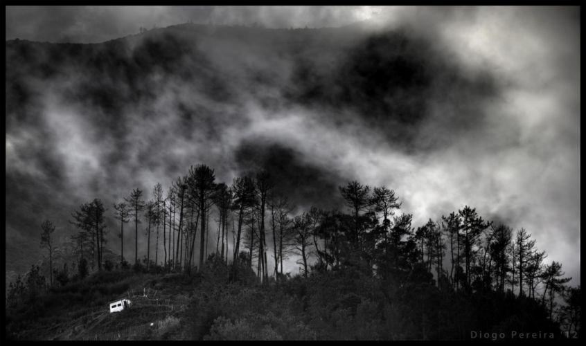 forest hill clouds sky mood dark wallpaper