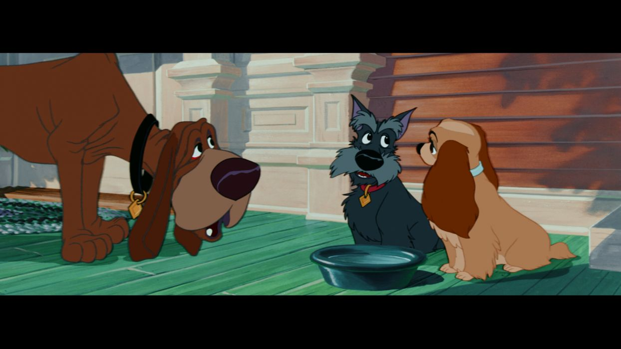 LADY AND THE TRAMP disney  p wallpaper