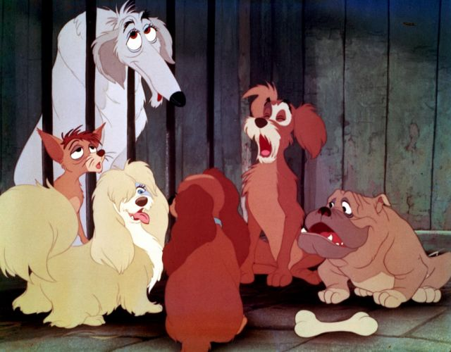 LADY AND THE TRAMP disney t wallpaper