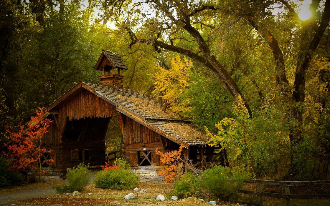 bridge trees autumn forest      g wallpaper