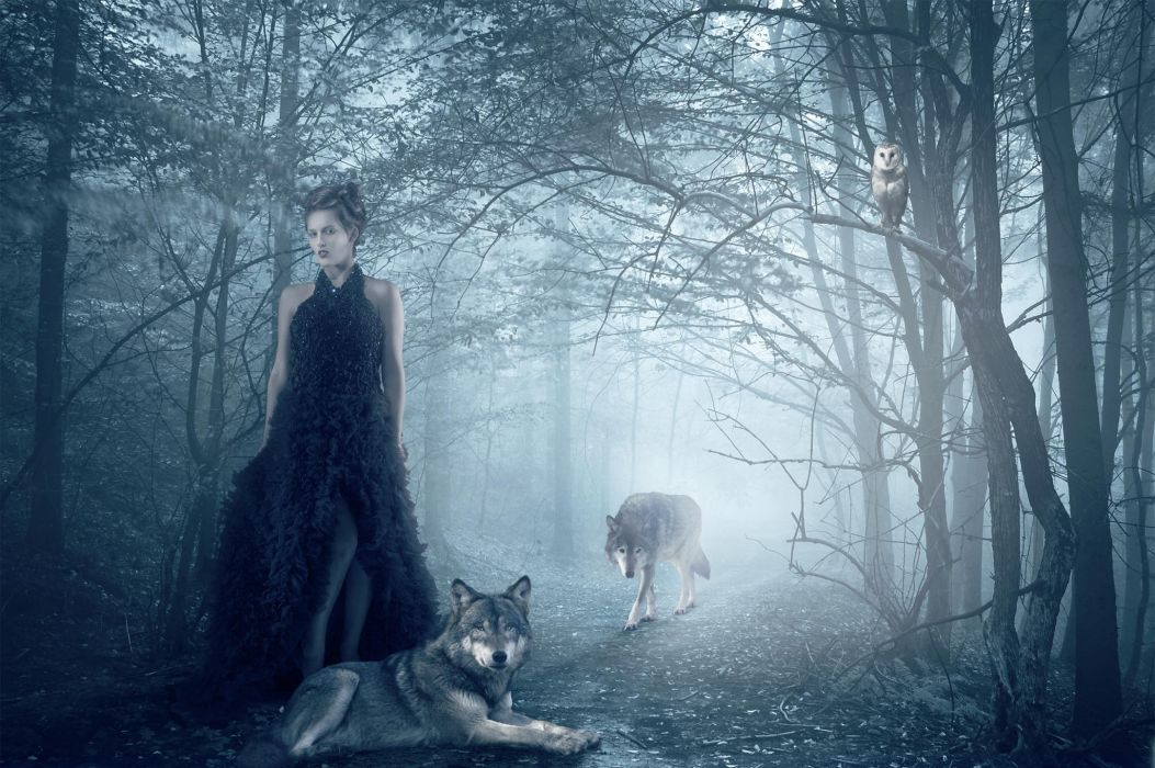 Isadora Vilarim girl wolf owl forest wolves gothic goth loli mood      g wallpaper