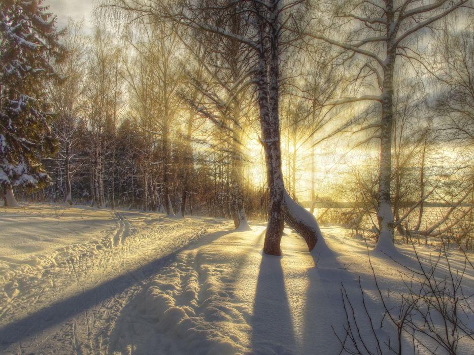 landscape nature winter road forest sun rays hdr snow sunrise sunset wallpaper