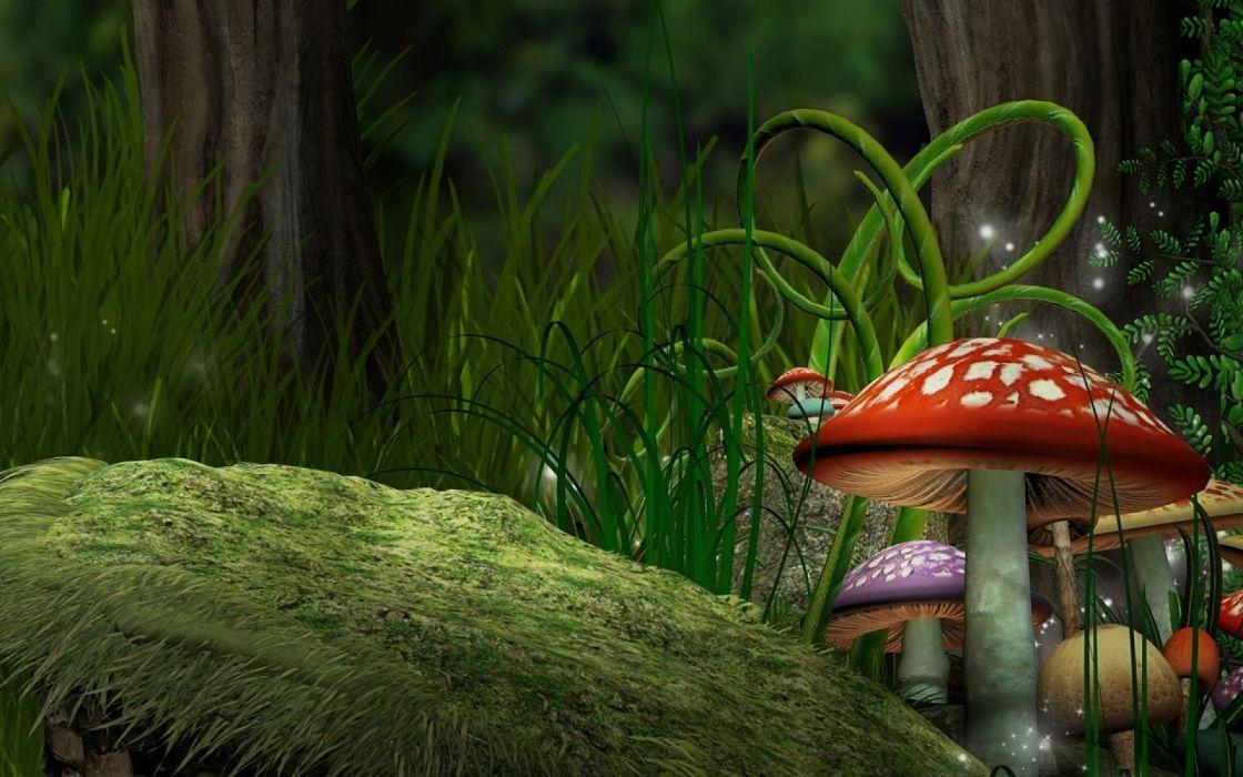 mushrooms forest grass art   g wallpaper