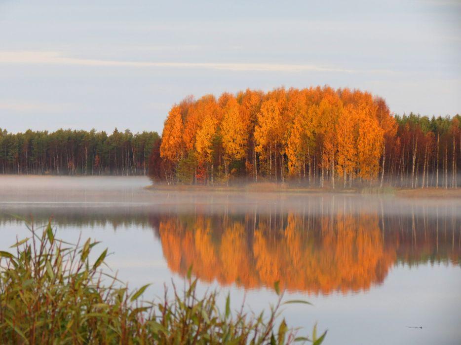 pond quiet forest autumn haze reflection wallpaper