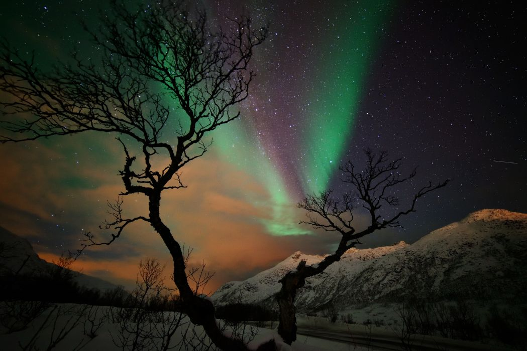 stars night mountains winter snow tree northern lights     f wallpaper