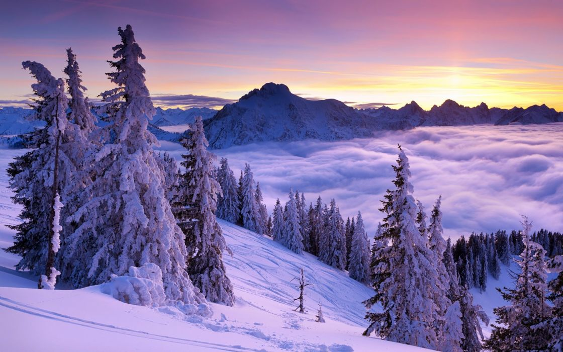 sunrise sunset mountains snow spruce fog wallpaper