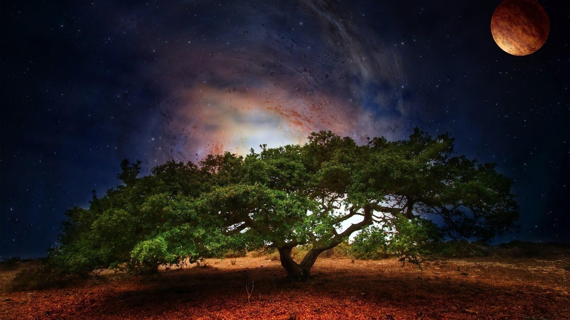 Tree art planet light fantasy sci-fi galaxy sky stars ...