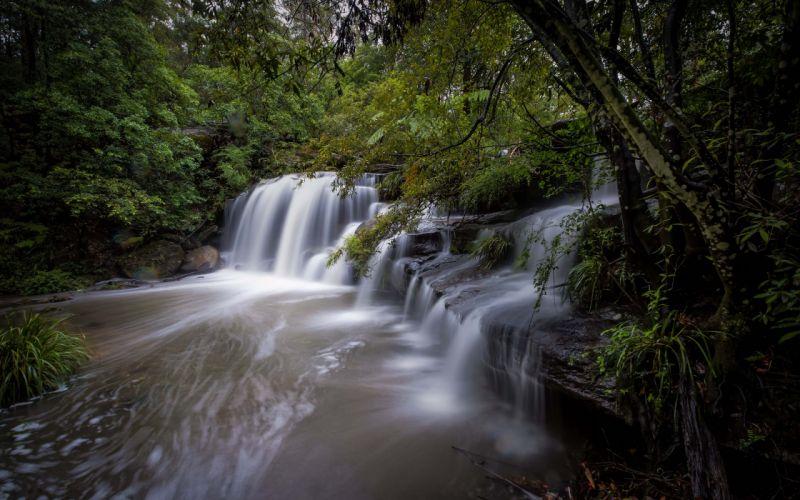 Waterfall Forest wallpaper