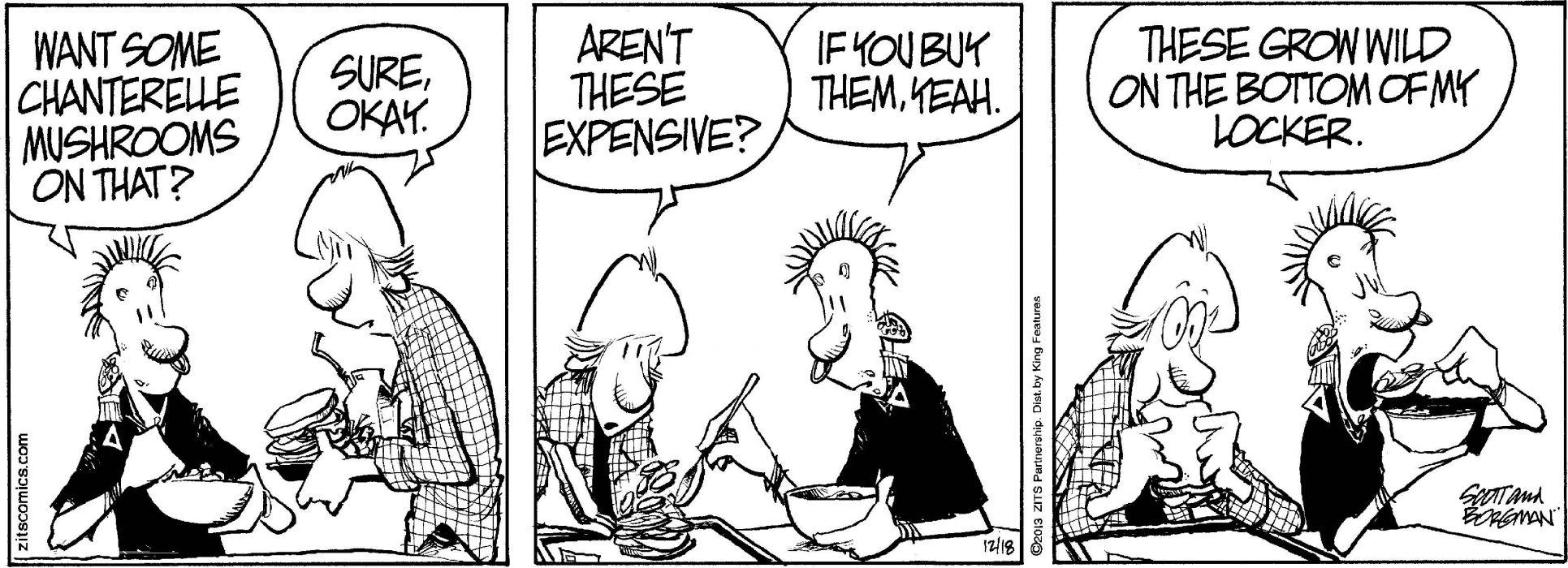 ZITS comicstrip humor funny (71) wallpaper