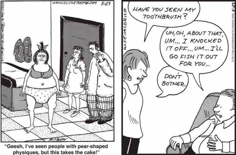 CLOSE-TO-HOME REAL-LIFE-ADVENTURES comicstrip (17) wallpaper