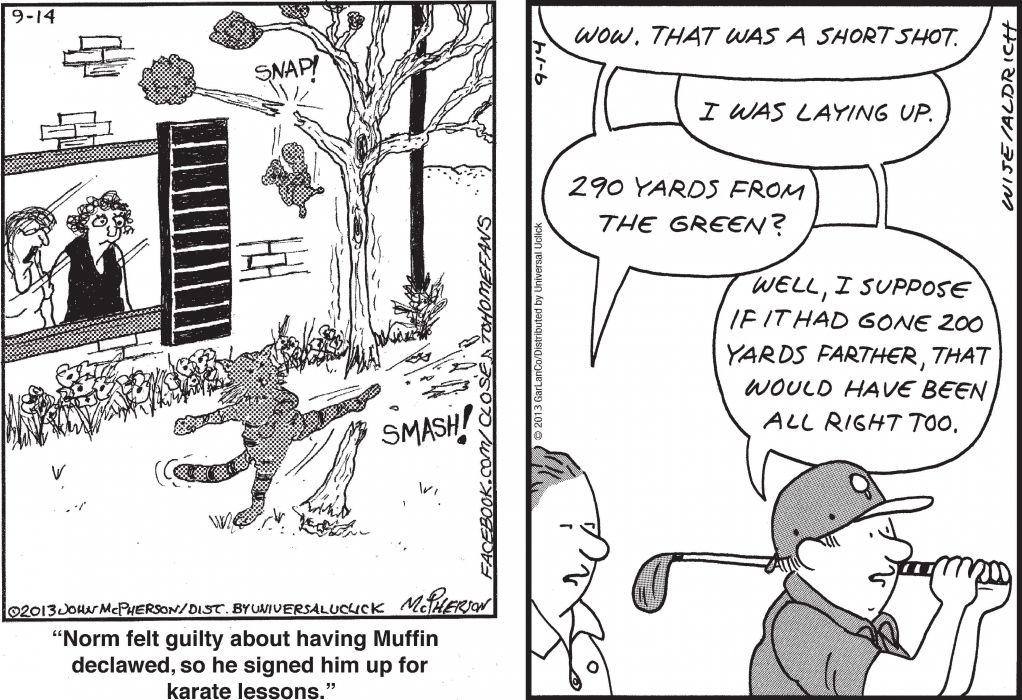 CLOSE-TO-HOME REAL-LIFE-ADVENTURES comicstrip (54) wallpaper