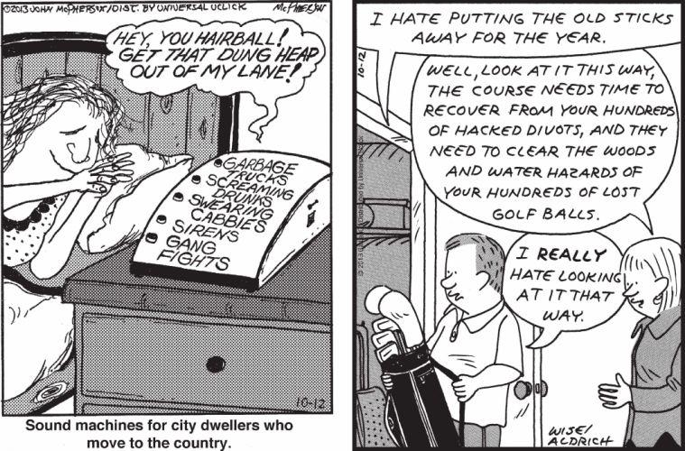 CLOSE-TO-HOME REAL-LIFE-ADVENTURES comicstrip (78) wallpaper