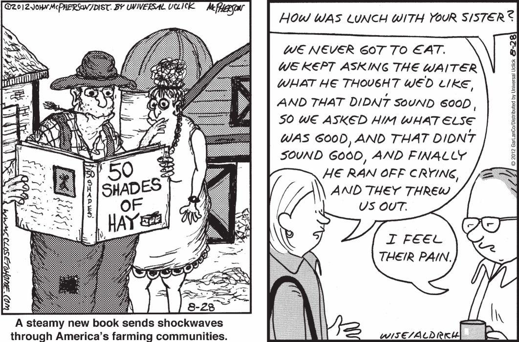 CLOSE-TO-HOME REAL-LIFE-ADVENTURES comicstrip (138) wallpaper